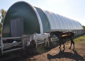 Семейная молочная ферма жителя Ишимбайского района признана одной из лучших ...