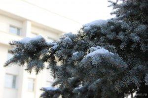 В Башкирии синоптики прогнозируют похолодание