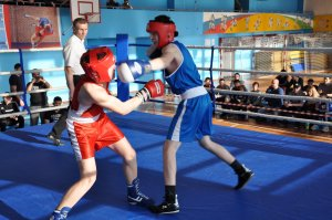Юные ишимбайские боксеры стали призерами крупных соревнований