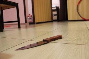 В Башкирии депутат подозревается в убийстве супруга из-за нецензурной брани