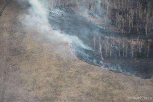 Виновники лесных пожаров могут быть оштрафованы на пять миллионов рублей -  ...
