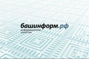 В Башкирии появилась система геолокации «Курай»