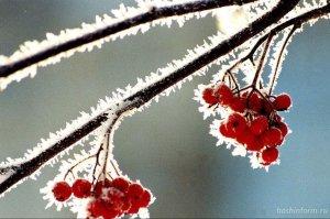 Самый короткий день и длинная ночь ожидают жителей Башкирии 21 декабря: ско ...