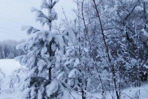 Какой будет погода на выходные в Башкирии - прогноз