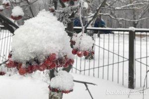 В Башкирии в ближайшие дни прогнозируются снегопады, метели и сильный ветер