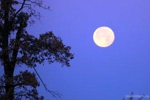 Жители Башкирии смогут наблюдать Голубую Луну