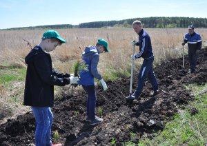 Ишимбайские школьники приняли участие в экологической акции
