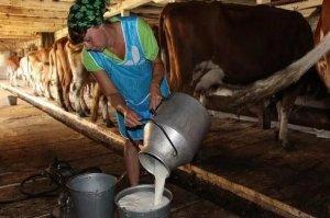 В Башкирии определят цены на сырое молоко