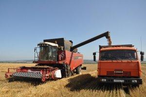 В Ишимбае уборку зерновых ведут семь хозяйств