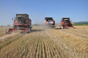 В Ишимбайском районе наращивают темпы уборки зерновых и заготовки кормов