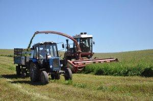 В Ишимбайском районе заготовка кормов для скота проводится успешно