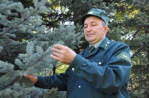 16 сентября работники лесного хозяйства отметят свой профессиональный праздник