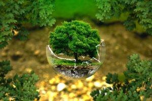 Жители Республики Башкортостан приглашаются к участию во Всероссийском конкурсе детского творчества «Природа родного края» и конкурсе фотографий «Экологические места России»