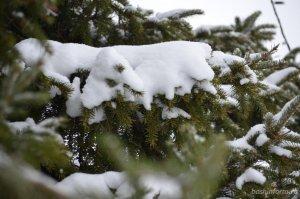 В Башкирии в ближайшие три дня будет снежно и морозно