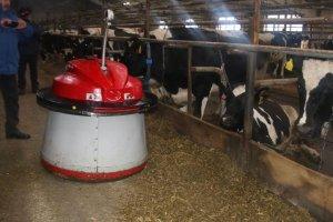 На ферме в «Красной Башкирии» работает робот-скотник