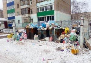 Жители Башкирии могут сообщить Радию Хабирову о проблемах с вывозом мусора  ...