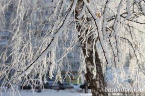 В Башкирии синоптики сообщают о метелях и резких перепадах температур на этой неделе