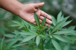 Ишимбайца осудят за незаконное хранение наркотика