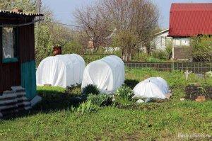 Садоводы Башкирии теперь должны оформлять свои дома по новому порядку