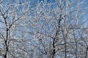 8 марта в Башкирии заметно похолодает