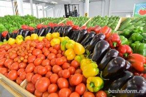 В Башкирии снизились цены на товары и услуги: дешевле стали яйца, сахар, стрижки и ремонт